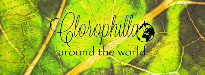 THE FRIDAY - CLOROPHILLA